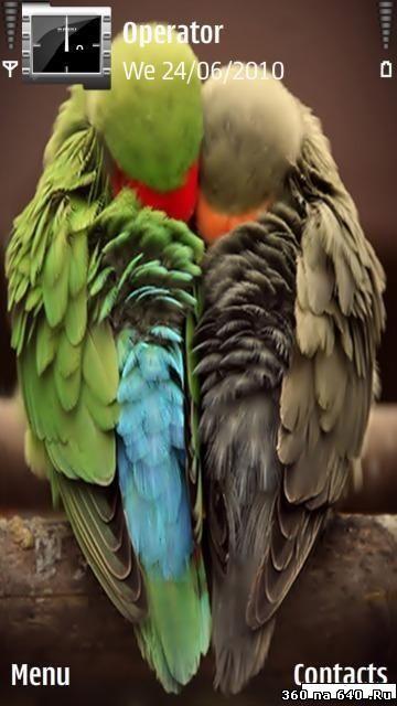 Cохраните картинку попугай на ваш компьютер